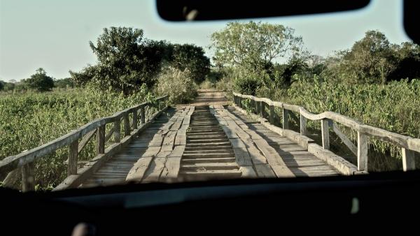 pantanal estrada